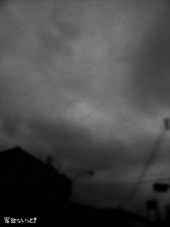 雨の鎖帷子